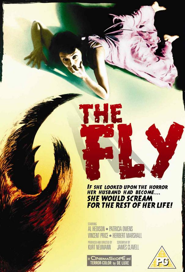 fly 31